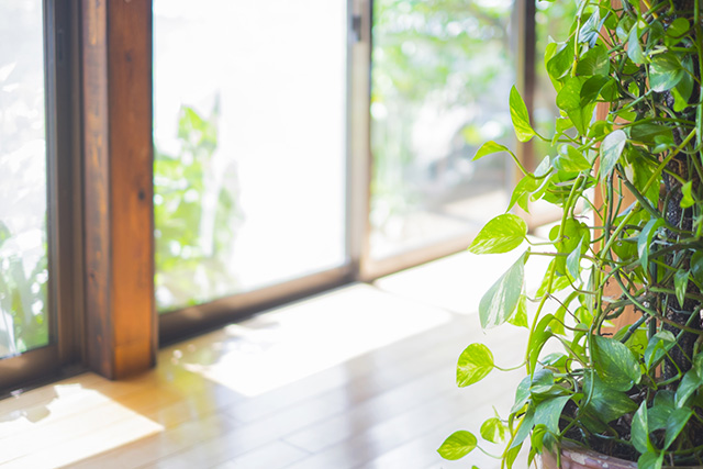 窓から差し込む西日対策! 効果的な解決策10選をご紹介