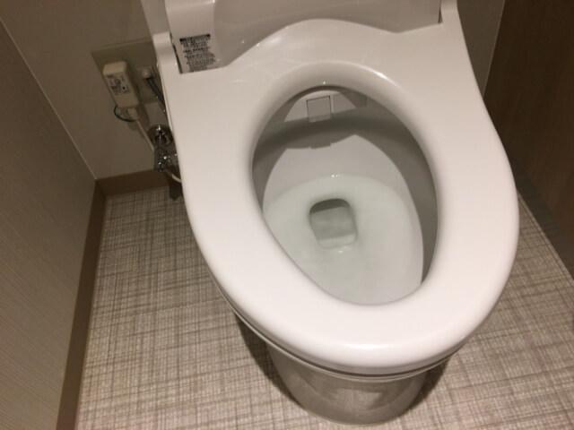 温水洗浄便座のノズルを清潔に保つには?温水洗浄便座の掃除方法