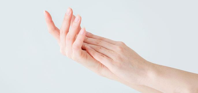 手肌イメージ